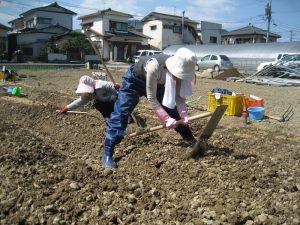 農家の連携と農作業体験